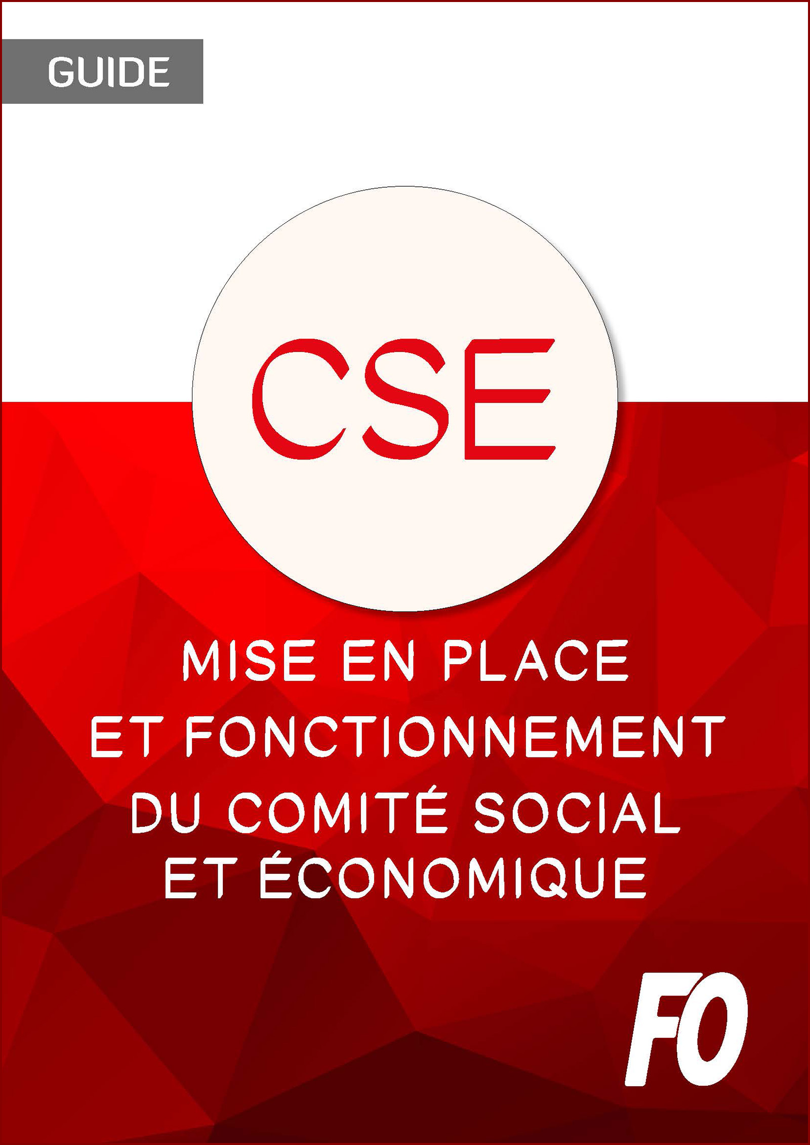 Mise En Place Et Fonctionnement Du Comite Social Et